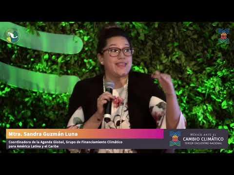 RESUMEN DÍA 4. Tercer Encuentro Nacional, México ante el Cambio Climático
