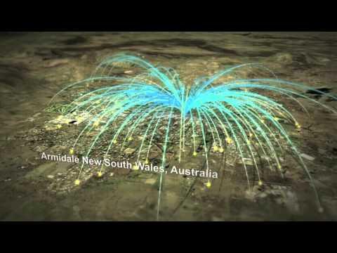 Bombing Armidale With Fibre