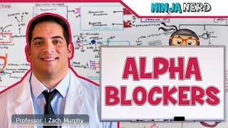 Hypertension Treatment | Alpha Blockers: Antihypertensives