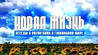 """Смешанный район. """"Новая жизнь"""", передача 258"""