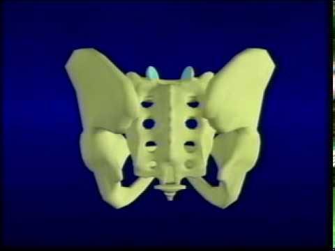 Nevralgie intercostali e osteocondrosi siamo