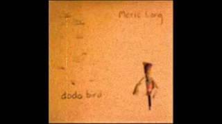 Notes - Meric Long (The Dodos)