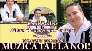 COLAJ ALBUM EMIL BADEA - LASTAR PRINTRE MARACINII