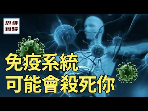 免疫系統是如何運作的