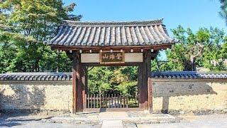 鹿王院嵐山京都/Rokuon-inTempleKyoto/아라시야마교토