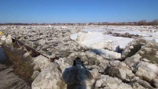 preview picture of video 'Maumee River Ice Flow 2015'