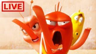 🔴 LIVE LARVA   THE GRAND BATTLE   BEST OF LARVA   Cartoons For Children   LARVA Official
