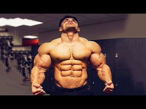 Quest-ce que cest la force du muscle