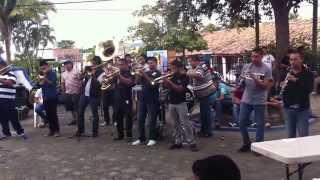 El pájaro burlón -Banda Perla Morada (en vivo)