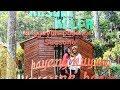 Rumah Pohon Taman Kelir Destinasi Baru Kabupaten Kediri