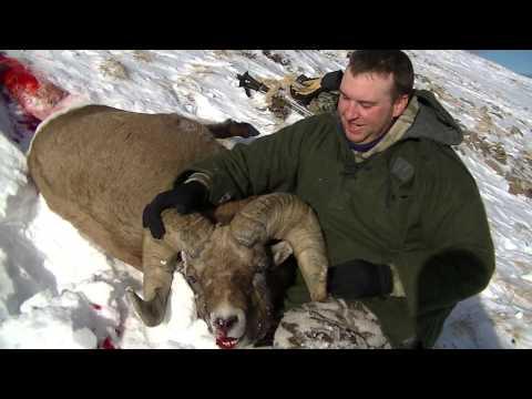 November 2013 Sheep Hunt - Part 2