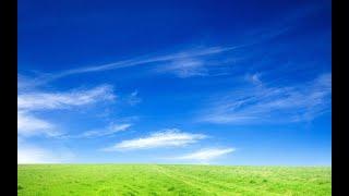 봄, 맑은 하늘(첫 자작곡)