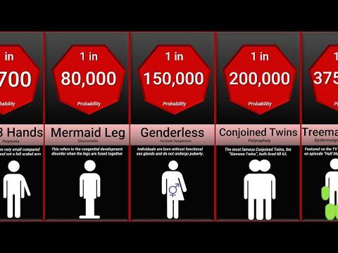 Az emberi vékonybél parazitái