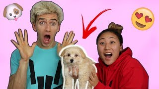 SURPRISING MY BROTHER WITH A PUPPY!! (EMOTIONAL) - Video Youtube