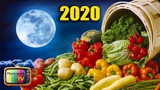 Рыбацкий лунный календарь на 2020 марта