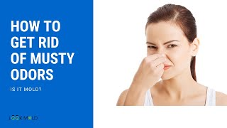 How To Get Rid Of Musty Odors or Smell - Is It Mold?