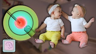 How To Have Twins: Get the Truth from a Fertility Expert