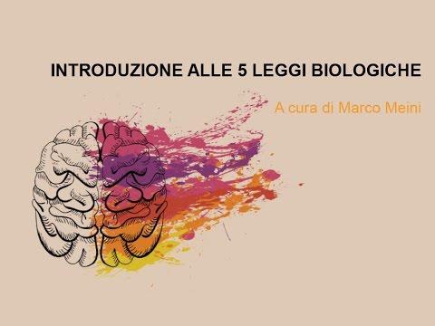 Olisticmap - Introduzione alle 5 Leggi Biologiche del Dr. Hamer