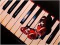 Toumi Milor claviste/ musicien/ sons/ live by Dafhak Maghreb Orient PROD.