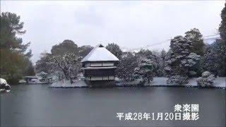 衆楽園・津山城の雪化粧(平成28年1月20日)