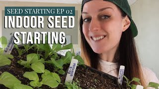 How I Start Annual Seeds Indoors | 2020 Zone 6b Gardening