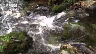 WebTV#37涼を求めて網代滝・龍門の滝