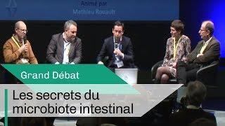 Les secrets du microbiote intestinal | Grand Débat | CNRS