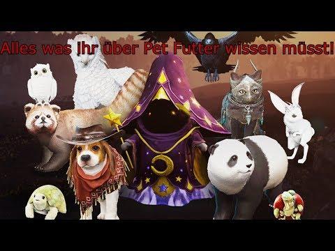 Black Desert Online - Alles über Pet Futter - [Guide/2019]