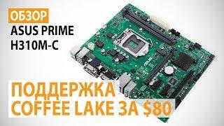 Обзор материнской платы ASUS PRIME H310M-C на Intel H310: поддержка Intel Coffee Lake за недорого