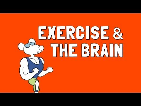 Video Exercise and the Brain