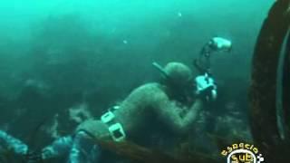 I Campeonato cazafotosub Mar de Lira 2009