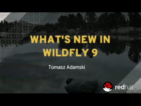 What's New in WildFly 9
