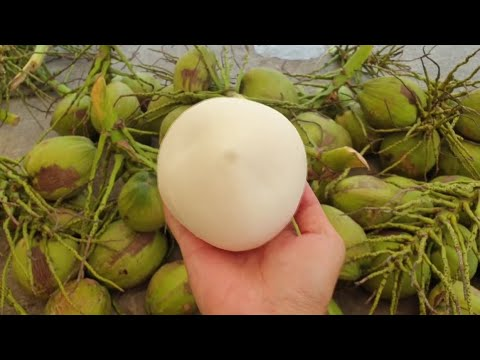 Coconut Cutting skills at Another Level