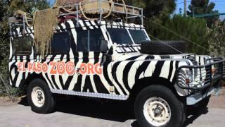El Paso Zoo 1