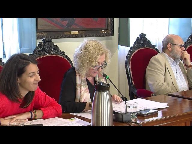 01/03/2019 - Pleno Municipal Ordinario