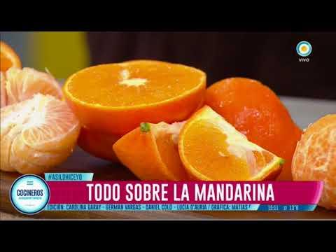 Todo sobre la mandarina