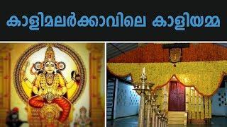 വിളിച്ചാൽ വിളിപ്പുറത്തെത്തുന്ന കാളിമലർക്കാവിലെ കാളിയമ്മ | Kalimalarkavu Temple, Irinjalakuda
