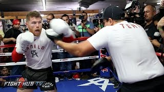 CANELO UNLEASHES 20 PUNCH COMBO ON MITTS! FULL MITT WORKOUT VIDEO