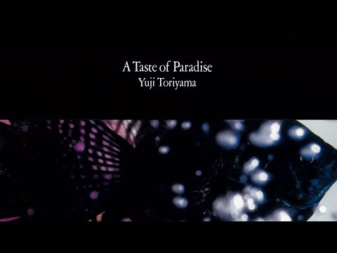 Yuji Toriyama ?- A Taste of Paradise (album) online metal music video by YUJI TORIYAMA