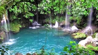 ♫♫Musica Para Bebes♫ Musica Sonidos De La Naturaleza Para Ellos♫♫
