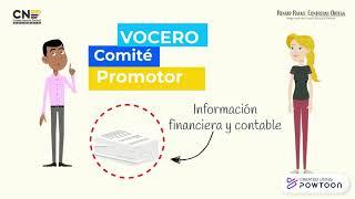 Presentación de Información Contable para los Mecanismo de Participación Ciudadana