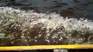 preview picture of video 'Sekilas tentang Desa Sepuk Laut'