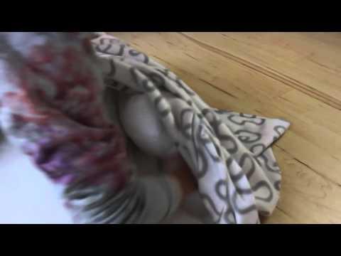 Hundekorb: #DIY Hundebett - Hundebett selbst gemacht?
