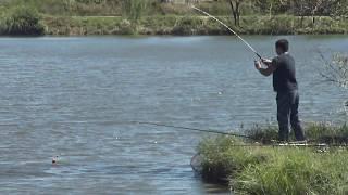 Пруд дубовка шпаковский район рыбалка