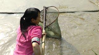 农村姑娘在池塘里忙活一大早上,没想到捞起了三条十多斤的大草鱼