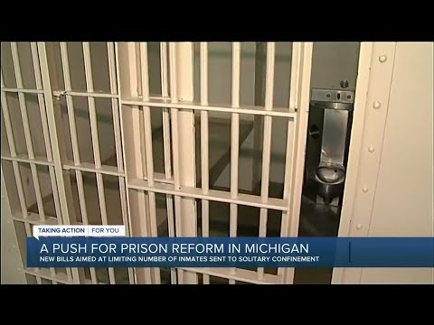 Group calls for oversight of solitary confinement in Michigan prisons