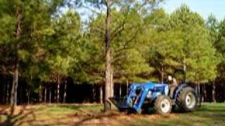 Tree Removal , Homemade root cutter