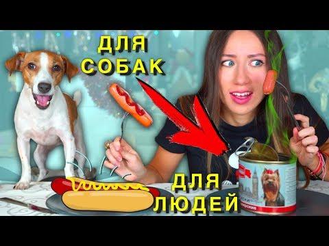 Собачья Еда ПРОТИВ Настоящей Челлендж ч 2 Не Обычная Еда   Елли Ди Пец