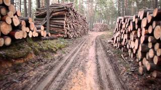 Studio SHK ISH-Sonderbeitrag: Moderne Holzfeuerung im Wohnraum