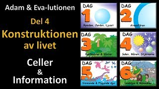 Thumbnail for video: Adam och Eva-lutionen Del 4: Konstruktionen av livet (Celler & Information)